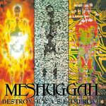 Meshuggah_Destroy Erase Improve